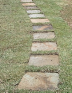 Natural Stepping Stone Squares